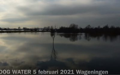 Hoog water bij Wageningen